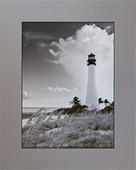 Matted Cape Florida Lt 8