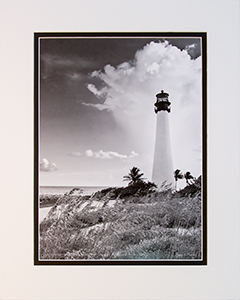 Matted Cape Florida Lt 7