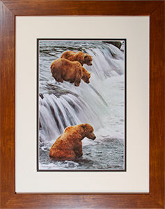 Framed Three Grizzlies 3