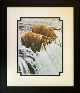 Framed Grizzlies & Salmon 1
